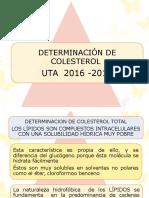 Determinacion de Colesterol (Uta) 2014 - 2015