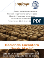 Hacienda Cacaotera MANUAL de RH