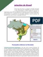Geografia - Aula 05 - Vegetação do Brasil e Hidrografia