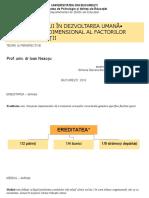 Ordinea Eului_Modelul triadic.odp