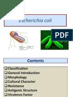 Lect 2 E.coli