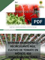 2013 12-16-01a Sistema Hidroponico Recirculante Ngs en Tomate e Invernaderos de Nueva Generacion Antonio Oliva 1412577405