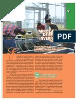 Arroz y gases de efecto invernadero.pdf