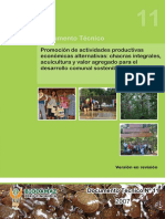 11 - Sistematizacion Alternativas Productivas-final - 28-11-07.pdf