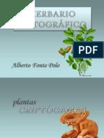 Herbario Fotográfico