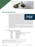 tibetan_moxibustion.pdf