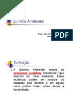 QuiAmb.pdf