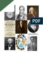 Imagenes Sistematica
