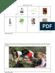 Primary Maori Resources-Tangata Whenua