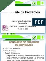Lineamientos Comite de Proyecto 2012