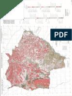 Mapa Vegetação.pdf