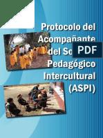PROTOCOLO.ASPI.2017.pdf