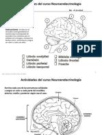 1. Actividad Complementaria Anatomia Encefalo