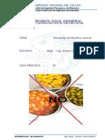 Bacillus Cereus Icmsf