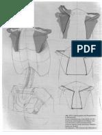 Gottfried-Bammes-Die-Gestalt-Des-Menschen-Anatomy-amp-Visual-Arts-3-3.pdf