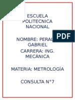 PeraltaGabriel7.docx