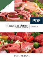 Unidad 1 Carnicos.pdf