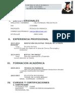 Curriculum Vitae MILIZA