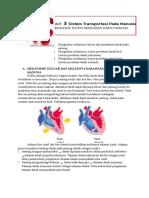 Handout sistem peredaran darahHUHUgcubcusu