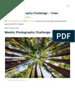 Weekly Photography Challenge - Trees