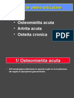 Osteomielita.ppt