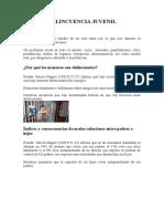 monografadelincuenciajuvenil-100207163703-phpapp02