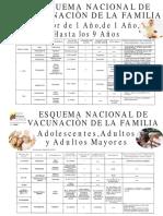 54613612-esquemas-de-vacunacion-venezuela1-120616220153-phpapp02.pdf