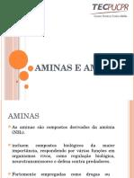 aminaseamidas-140521222855-phpapp01