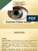 Ex Físico Ocular 1