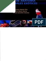 Atlas de anatomía de animales exóticos.pdf