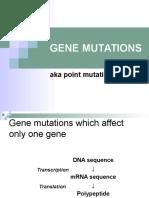 07 Gene Mutations