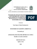 Tesis Para Libro Angie Rivera Dacosta - Mayo 2014