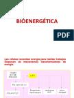 001-BIOENERGÉTICA.pdf