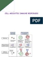 Cell-mediated Immune Responses8