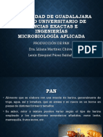Produccion de Pan Micro