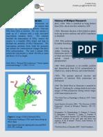 RNA Polymerase Spec Sheet