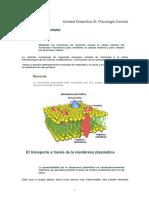 T 2.1.- Fisiologia Celular Original