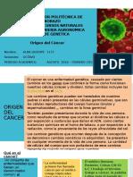 Origen Dek Cancer
