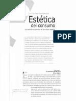 Dialnet-EsteticaDelConsumoLasPuestasEnPracticaDeLaCultura