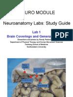 Neuro Lab 1 Study Guide (1)