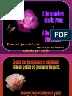 1 - JESÚS - Seguir a Jesús - A La Sombra de La Rosa (Tommy's)