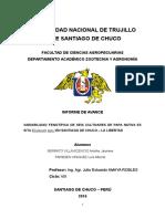 Informe de Proy. de Papa