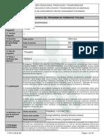 Tecnico Labores Subterraneas-Programa Formación Titulada