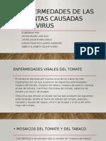 Enfermedades de Las Plantas Caudadas Por Virus