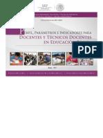 SEP_Ppi Doc Tecnico Docentes