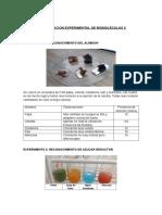 Practica Nº 3 - Determinacion Experimental de Biomoléculas II