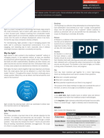 Agile Executive Summary.pdf
