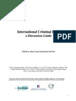 international criminal law.pdf