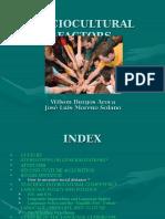 socioculturalfactors-091124084757-phpapp01