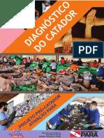 DIAGNOSTICO CATADOR.pdf